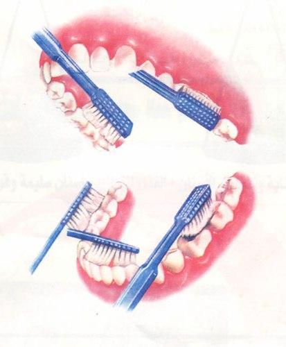 Правильные движения для очищения зуба от налета